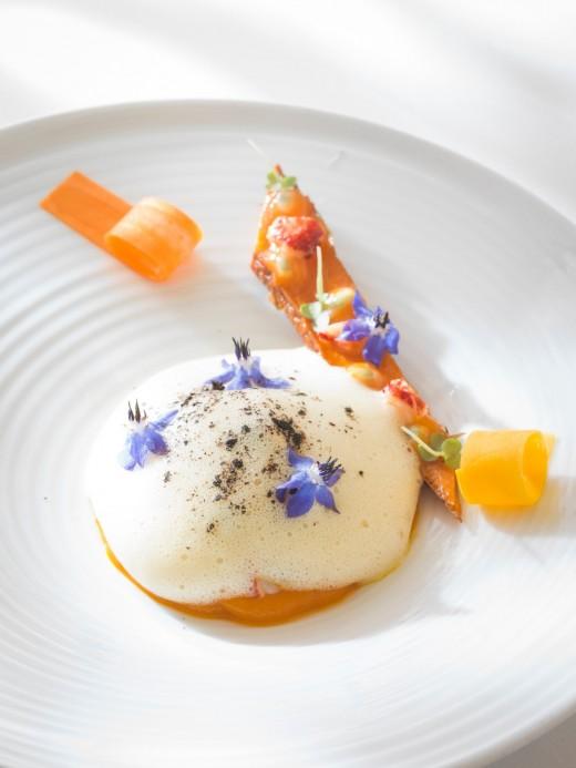 Gourmandise carotte homard passion